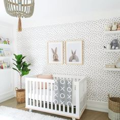 Here's What's Trending in the Nursery this Week modern boho nursery wtih bunny prints, bunny peek a boo nursery artwork wtih dot wallpaper, neutral nursery with modern crib and fiddle fig iwth open shelf decor, book ledges in modern boho nursery design Boho Nursery, Nursery Neutral, Nursery Room, Girl Nursery, Baby Bedroom, Baby Nursery Grey, Grey White Nursery, Grey Crib, Bunny Nursery