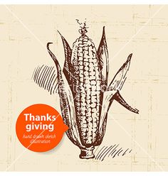 Hand drawn vintage thanksgiving day sketch vector  - by pimonova on VectorStock®