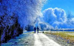 Reminds me of walks I took in Moosburg Germany with winter weather... The dogs loved it
