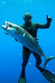 Spearfishing Madagascar & the Casor Banks