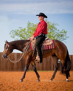 """""""I've been training horses for 25 years and I have never had a supplement do what Equine Omega Complete does, from muscle tone to Anhidrosis, it is the best. In 2010 we had the Jr. Western Pleasure champion at the AQHA  Congress, the AQHA World Champion, the  2yr. Old Western Pleasure and the Reserve World Champion in Jr. Western Pleasure. All of these horses were on Equine Omega Complete, and it really made the difference!"""" Gil Galyean   Gil Galyean Performance Horses"""