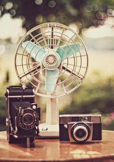 This will be some of the decorations for my ideal party, as it'll bring more of the vintage feel because of the old-school kind of cameras and the fan.