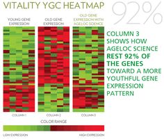 Ageloc Vitality will reset your gene expression to put the genes back to their original, youthful state.  For more information : mailto : eskjavik@hotmail.com