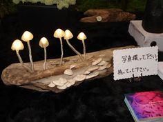 LED mushroom lamps!!