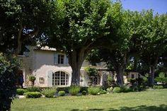 Provence!