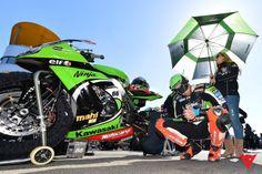 Tom Sykes in Action - 2013 World Superbike season