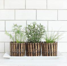 mini-pots de fleurs décorés de pinces à linge