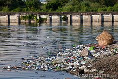 Causes of Water Pollution and How to Prevent It #waterpollution #ocean #awareness