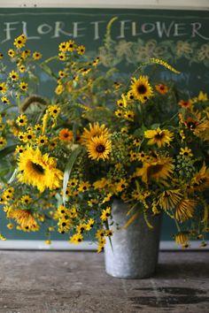 flowers.quenalbertini: Farm sunflower explosion bouquet, Floret Flowers