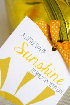 "6th Street Design School: Bag of Sunshine (another take on the ""box of sunshine"")"