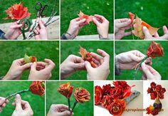 Rosas con hojas del otoño