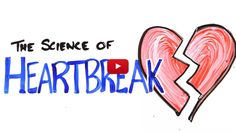 If You Think Heartbreak Is Only A Metaphor, Science Proves You Wrong?ref=pinp nn Find out what science says about heartbreak.