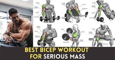 The passion to grow biceps between guys this day is crazy, Every guy going to the gym wants to develop massive & defined biceps. Until the next time you hit your bicep workout, we have some detailed anatomy information and tips for your best bicep workout for mass. Bicep Workouts For Mass, Best Bicep Workout, Biceps Workout, Gym Workouts, Fitness Nutrition, Going To The Gym, Anatomy, Passion, Guys