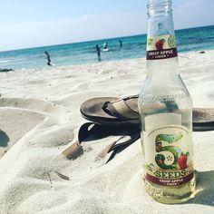 Could be worse... #australia #rottnest #island #rottnestisland #cider #beach #thongs #sand #vacation #travel #ocean #perth #westernaustralia #wa #drink #sun #wanderlust by der_tim http://ift.tt/1L5GqLp