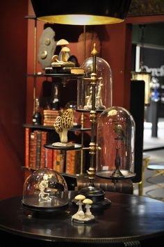Curiosities in bell jars. Steampunk House, Steampunk Lamp, The Bell Jar, Bell Jars, Cabinet Of Curiosities, Apothecary Jars, Glass Domes, Taxidermy, Home And Living