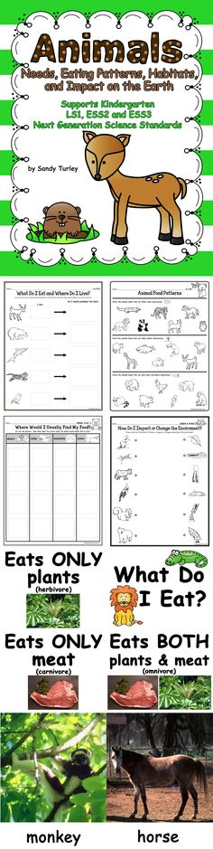 $ FANTASTIC!  65 pages.  Everything needed to support lessons on Animals that support the Kindergarten Next Generation Science Standards LS1, ESS2 and ESS3.   Activity sheets included are: - Am I Living or Non-Living? - What Animals Need - What I Eat and Where I Live - Animal Food Patterns - Where would I Usually Find My Food? - How do I Impact or Change the Environment?  It also includes small full color photographs for sorting activities and large photographs of varaious animals