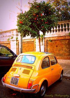 Rome. Vintage Fiat 500 Orange Tree Photo. Wall Art. Decor. Photography. Italy. Antique Car. Travel Photograph. Fine Art. Italian. Hipster.