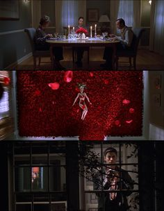 American Beauty (1999) | Cinematography by Conrad L. Hall | Directed by Sam Mendes