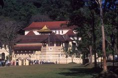 Located in Kandy, long a center of the Buddhist faith, the stunning 17th-century Temple of the Tooth is believed to house the left upper canine tooth of Buddha. #SriLanka #SriLankaJetaime #Travelling #Love #Buddha #Amazing #Holiday #ExploreSrilanka