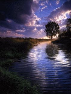 water nature gif | Animated Water Stream Mobile Wallpaper