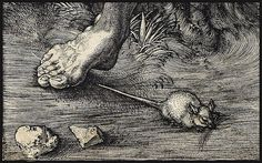 'The Fall of Man (Adam and Eve)' engraving (Detail), 1504 // A. Durer