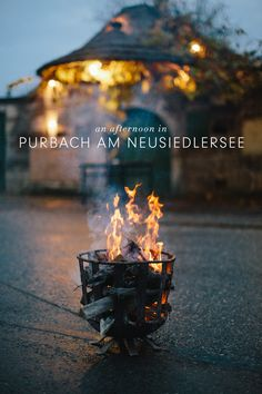 Spend an afternoon in the charming little village of Purbach am Neusiedlersee, Austria. Travel Around The World, Around The Worlds, You Are Awesome, Opening Ceremony, Wine Tasting, Austria, Winter, Europe, Places