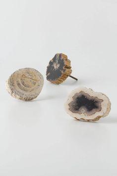 Large Petrified Knobs