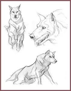 Loup ☺