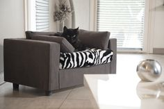 Pet Sofa ♥ Luxury & Comfort ♥ 100% removable - Memory foam cushion - Drawer 🐾 #bedpet #petlovers #giusypop #catlovers #petsofa #design #interiordesign #catbed #cat