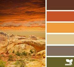 Orange /Brown