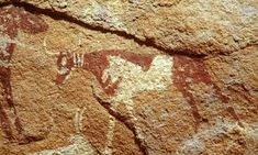 Prehistoric African Paintings and Engravings Ancient Art, Ancient Egypt, African Paintings, Cow Face, Science Art, Rock Art, Black History, Archaeology, Photo Art