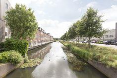 Maria Rutgersstraat Zutphen (jaartal: 2010 tot heden) - Foto's SERC