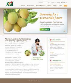 Website design for JOil, Singapore. View more website design samples here: http://www.niyati.com/website-portfolio/51/joil-singapore