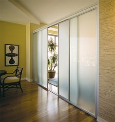Something similar to this - sliding room divider - but I would say it would open all to one side or the other - not in the middle (?)