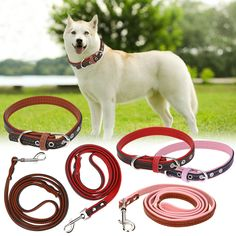High Quality Genuine Leather Pet Dog Leash Luxury Strong Puppy Collar Leash Lead For Puppy Dogs // Worldwide FREE Shipping //     #dogsupplies