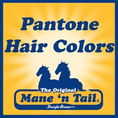 8e40be73387 95 Best Mane  n Tail Blog images in 2019