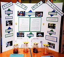 ... science fair projects to give you some ideas of what you can do