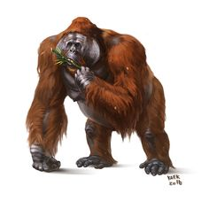 Gigantopithecus blacki by Kaek on DeviantArt Prehistoric World, Prehistoric Creatures, Reptiles, Mammals, Weird Creatures, Fantasy Creatures, Borneo Orangutan, Science Fiction, Extinct Animals