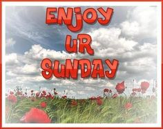 Enjoy your sunday