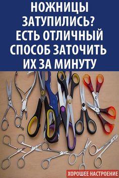 metoda babushkin de tratament pentru varicoză varicoză 100)