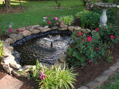 Backyard ponds ponds and backyards on pinterest for Koi pool water gardens thornton