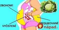 Kapusta je diétna superingrediencia. Je nielen veľmi lacná, ale aj veľmi zdravá a obsahuje minimum kalórii. Nezáleží natom, či si vyberiete bielu alebo červenú – oba druhy sú veľmi zdravé a tiež nemajú takmer žiadne kalórie. Diet And Nutrition, Healthy Weight Loss, Healthy Lifestyle, Health And Beauty, Health Fitness, Cheesecake, Medicine, Diet, Cheesecakes