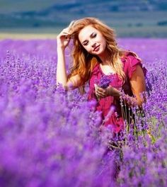 Beautiful blond hair girl in lavender meadow photo