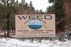 Is Mary Jane your best friend? Move to Weed, California. | Top 15 Obscure Cities That You Should Seriously Consider Moving To