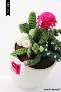 cactus-uncinetto-composizione-600