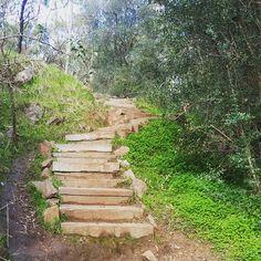 24 awesome Adelaide walks