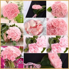 Wedding flowers package with 36 arrangements made with pink carnations... It has everything you need for your floral decoration!