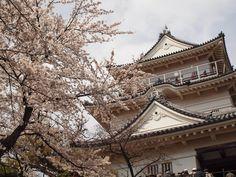 Kanagawa,Japan (Odawara)
