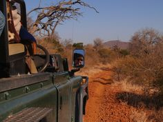 Safari in Sudafrica: 8 consigli per la prima volta - Lonely Planet