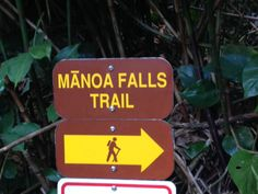 Manoa Falls, Oahu Hawaii